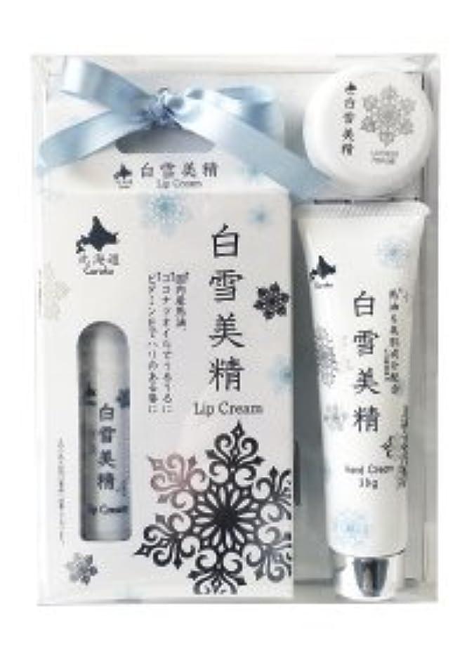 三十スマッシュ光北海道お土産 白雪美精ギフトセット (リップクリーム 4g ?ハンドクリーム 30g ?練り香水 10ml)
