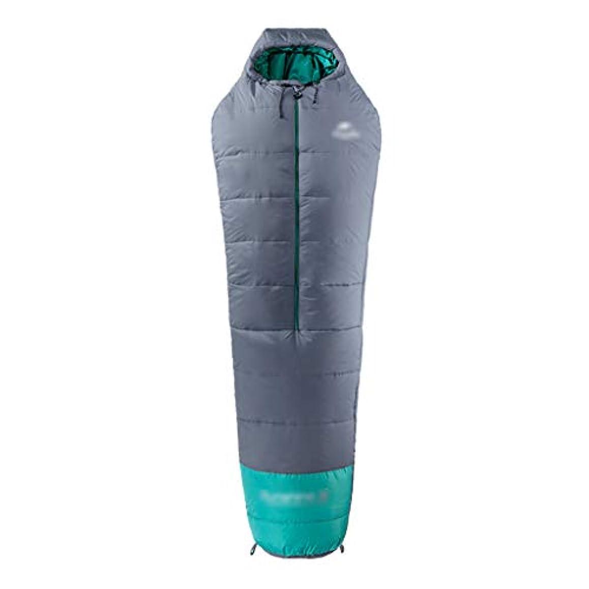 虚偽倍率プレゼン寝袋キャンプキャンプ寝袋大人の寝袋大人の寝袋旅行ポータブル屋外のハイキングキャンプの寝袋機器フィールド用品 (Color : GRAY, Size : 210*80CM)