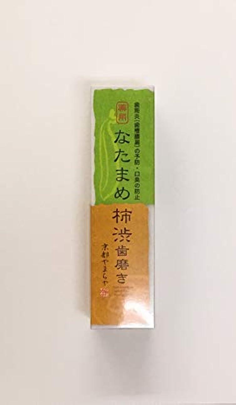 アロングエントリ略すなたまめ柿渋歯磨き 120g
