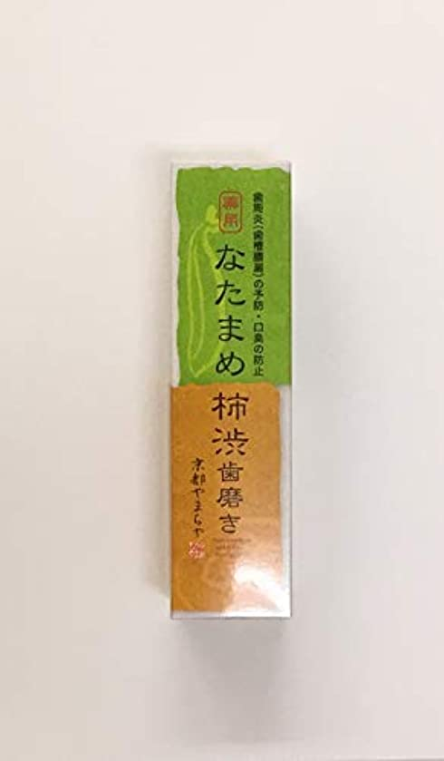 二年生不当波紋なたまめ柿渋歯磨き 120g