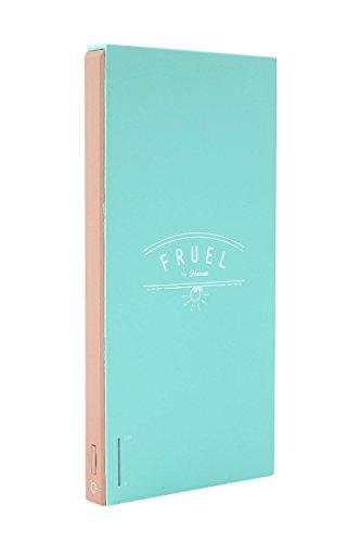 FRUEL 6000mAh モバイルバッテリー iPhone/Android対応 [ミント/ブラウン]