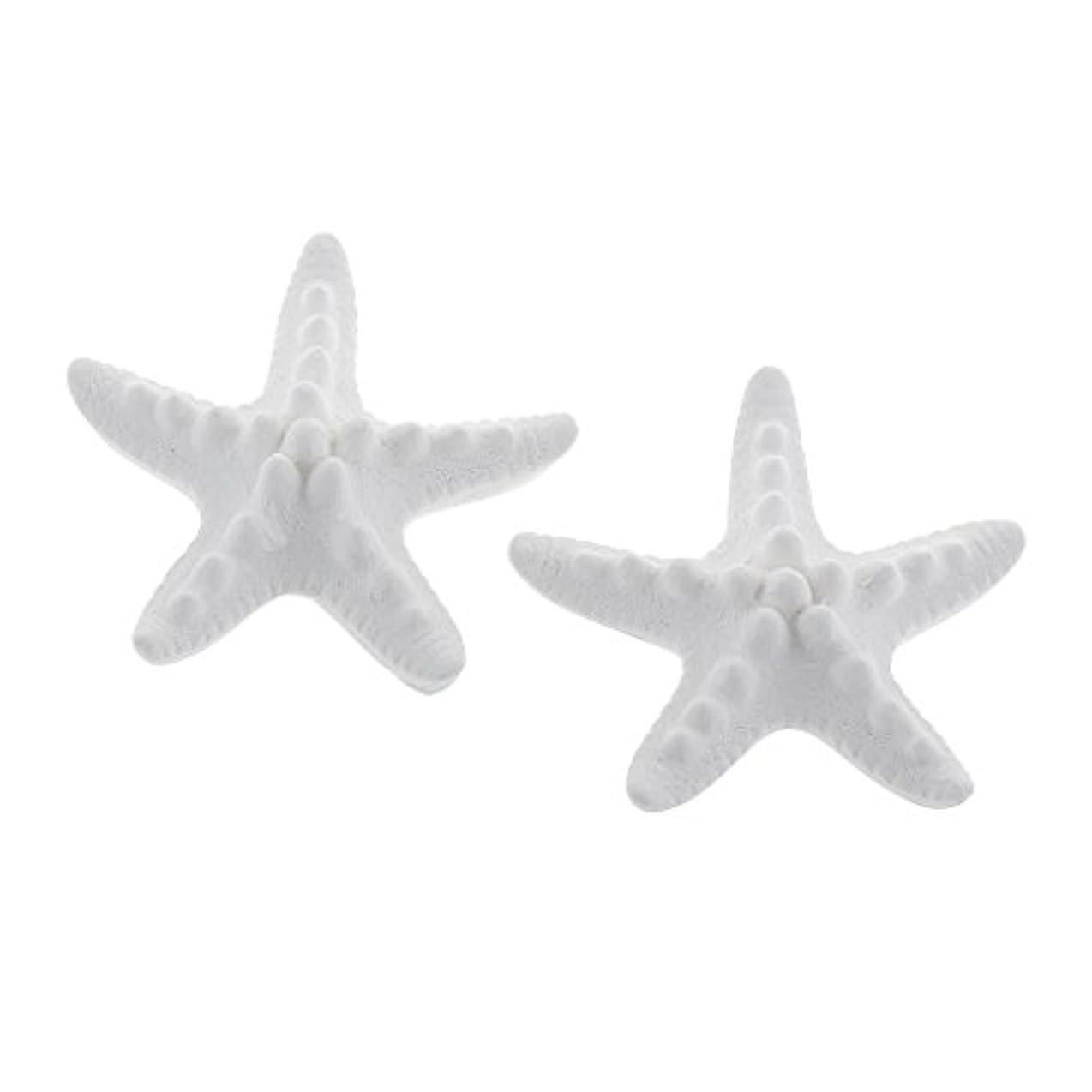 ジェーンオースティン美人良さFLAMEER 家の装飾のための2個のSeastarの香りの芳香の石DIYの精油の拡散器