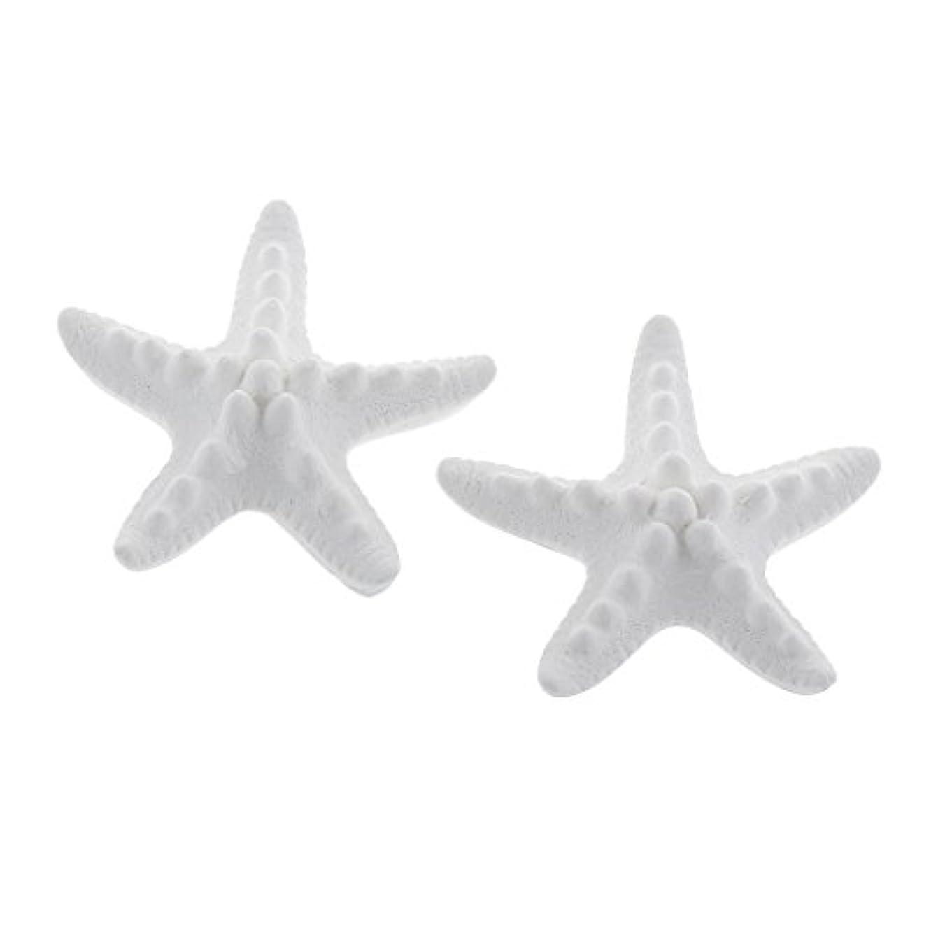 ひねくれた遠足抹消家の装飾のための2個のSeastarの香りの芳香の石DIYの精油の拡散器