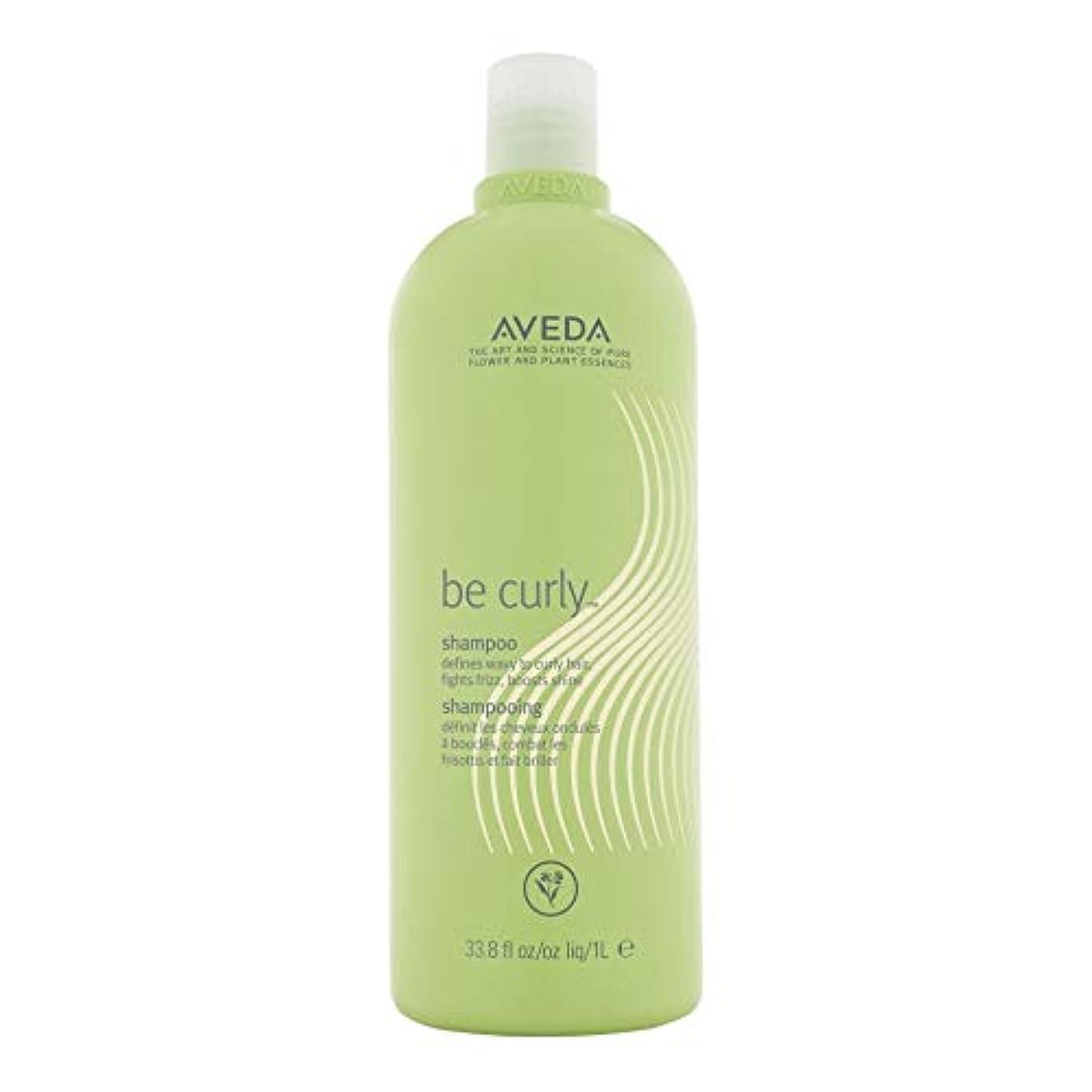 丁寧カナダ夜明け[AVEDA ] アヴェダカーリーシャンプー1リットルなります - Aveda Be Curly Shampoo 1L [並行輸入品]