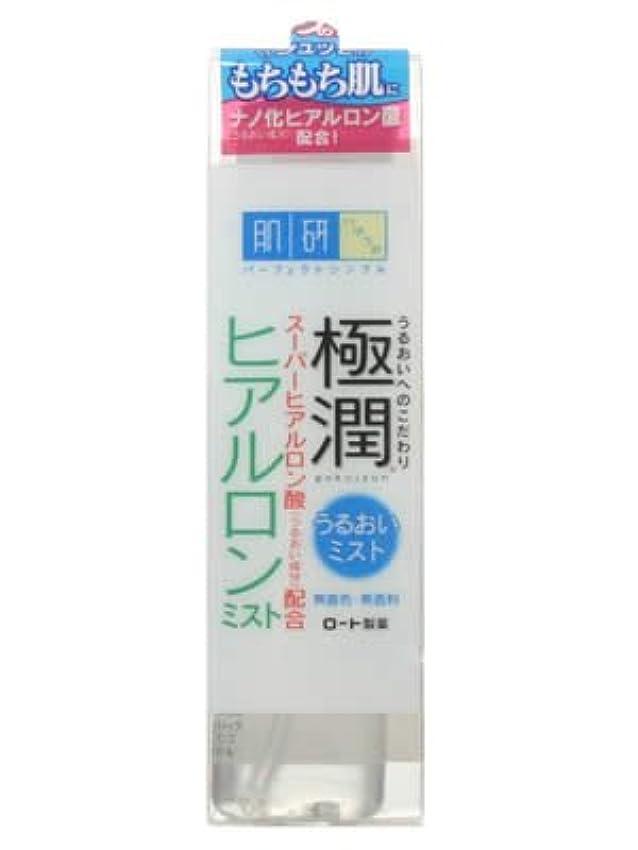 蒸し器混乱したメンダシティ肌研 極潤ヒアルロンミスト 45ml