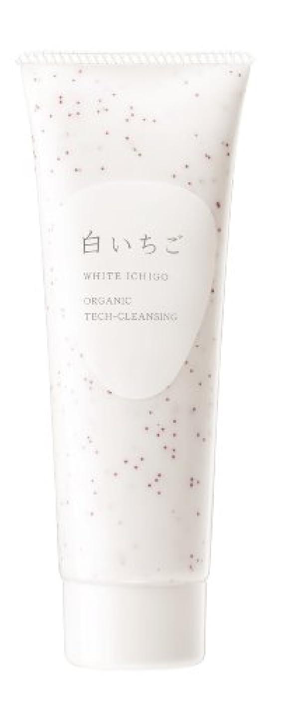 理解嘆願漏れWHITE ICHIGO(ホワイトイチゴ) オーガニック テック-クレンジング 115g