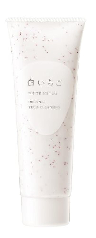 蒸少年見捨てられたWHITE ICHIGO(ホワイトイチゴ) オーガニック テック-クレンジング 115g