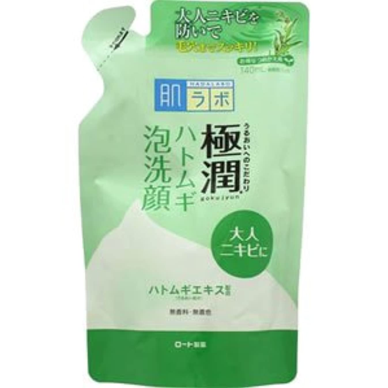 銀河帰する防腐剤(ロート製薬)肌研 極潤ハトムギ泡洗顔 140ml(つめかえ用)(お買い得3個セット)