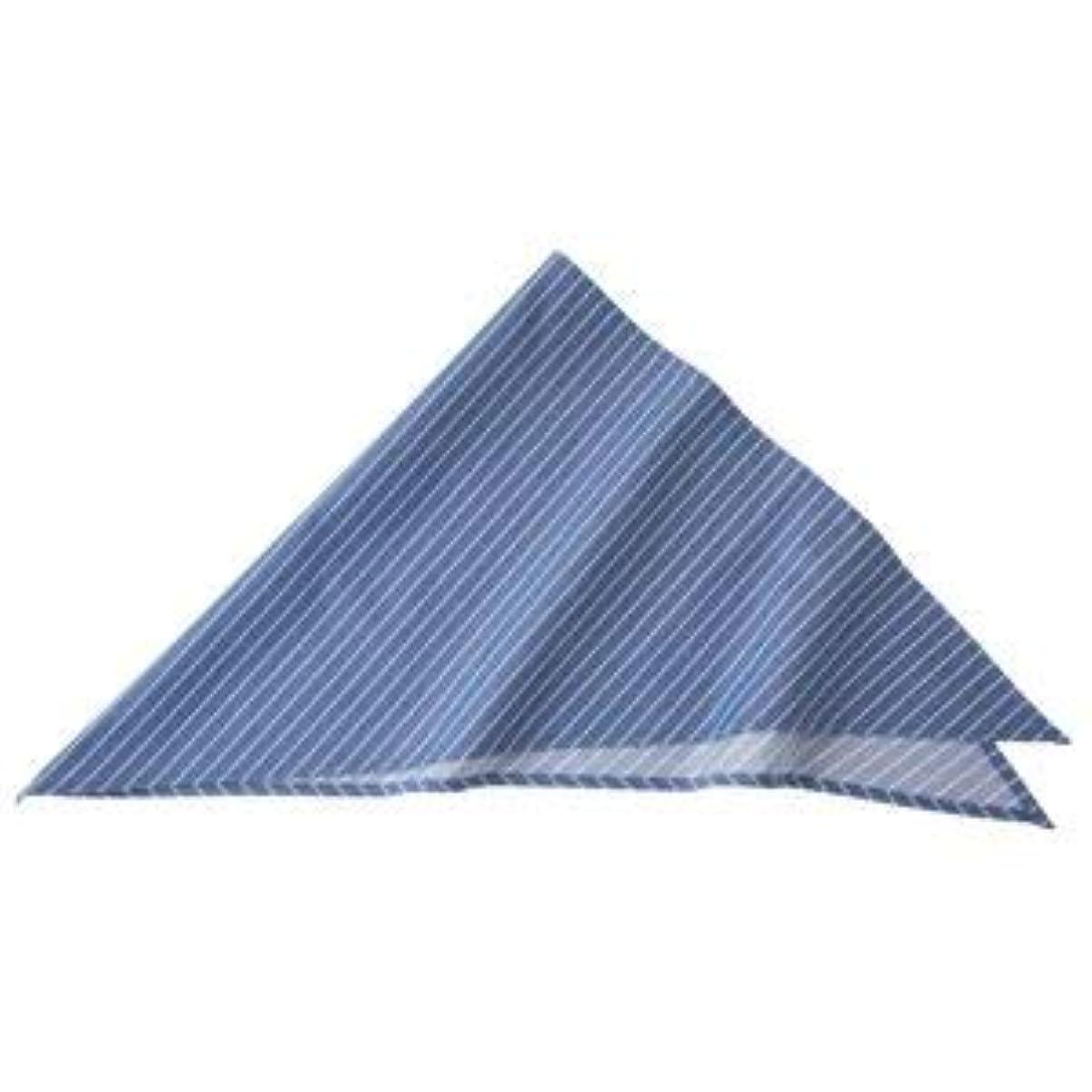 節約する足首平野ストライプ三角巾 ブルー KMB2941-22