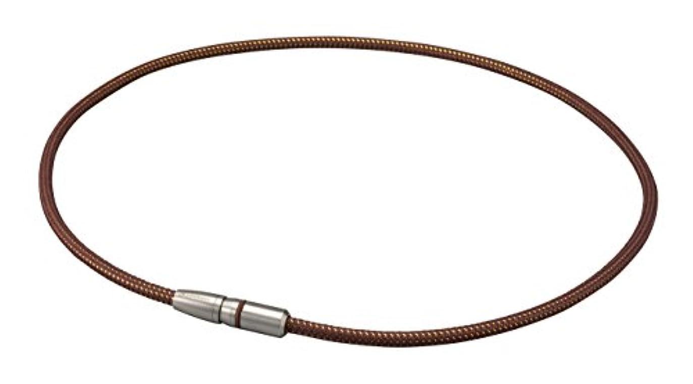 新年パーツ任命するファイテン(phiten) ネックレス RAKUWA磁気チタンネックレス BULLET 50cm