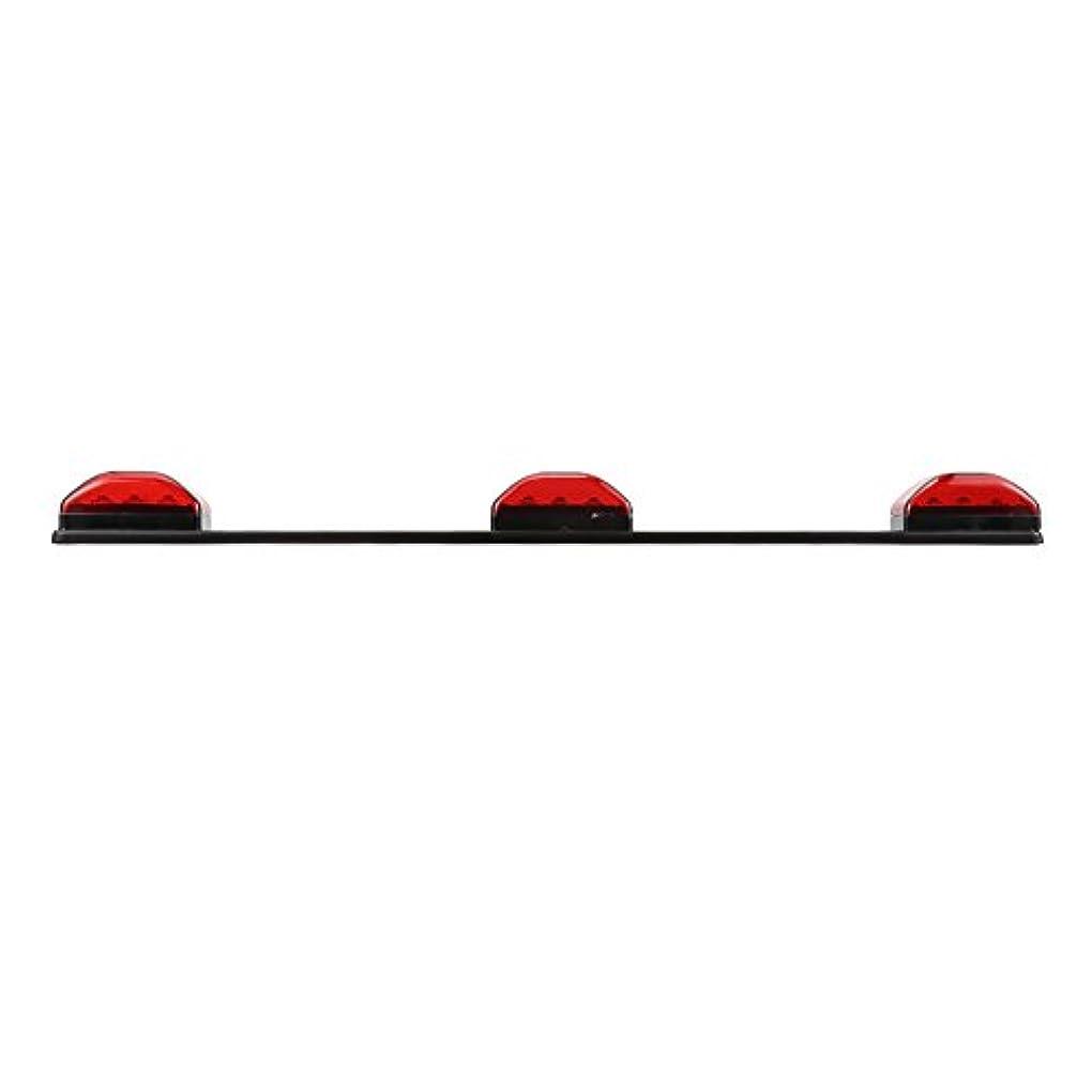 鏡時制限られたRaiFu LEDライト 12V 赤色光 ビーズ ステンレス 9LED LEDバー ストリップライト ランプ 透明シェル付