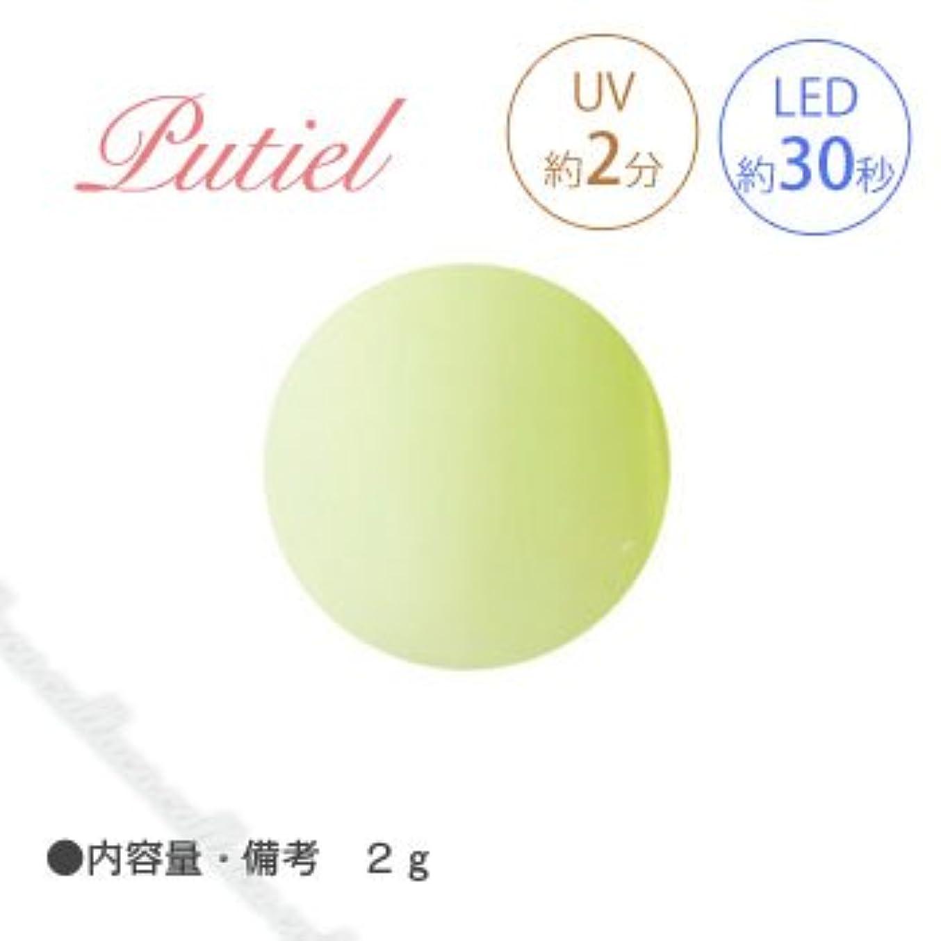 幻想熱心な会うPutiel プティール カラージェル 225 マスカット 2g