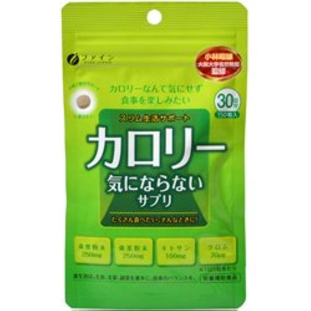 公演ゲートキネマティクスカロリー気にならない【3袋セット】ファイン