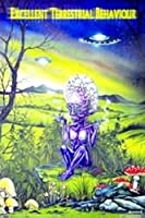 Excellent Terestrial - Alien Poster - 86x62cm