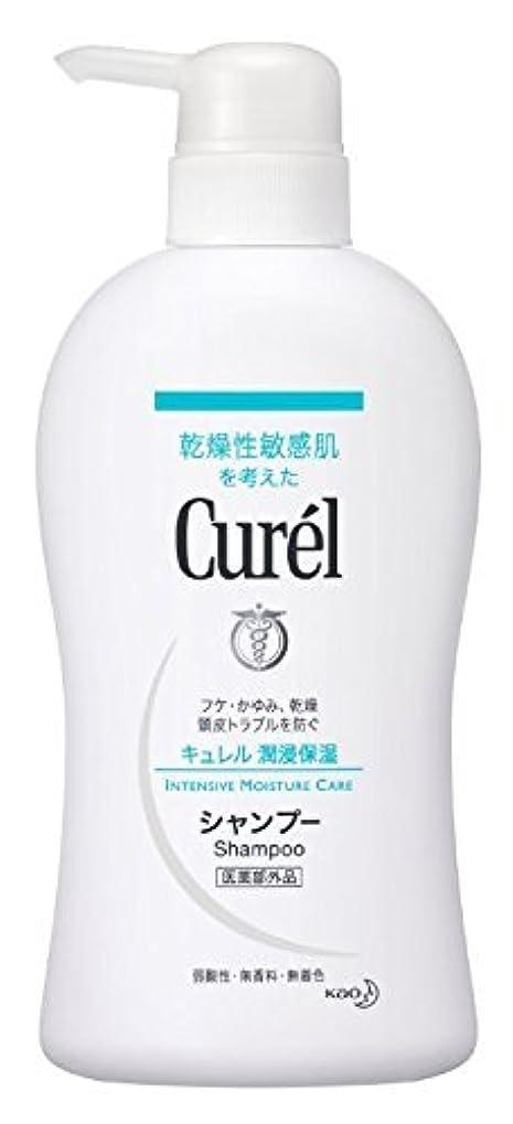 火曜日回復する絶妙花王 Curel(キュレル) シャンプーポンプ420ml×2 1576 P12Sep