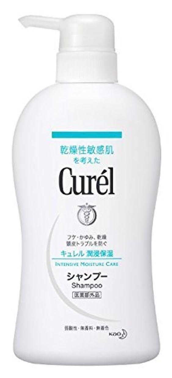 飼料大惨事必須花王 Curel(キュレル) シャンプーポンプ420ml×2 1576 P12Sep