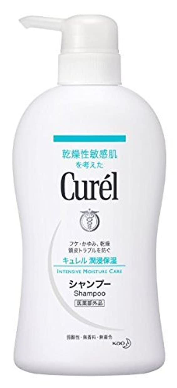 花王 Curel(キュレル) シャンプーポンプ420ml×2 1576 P12Sep