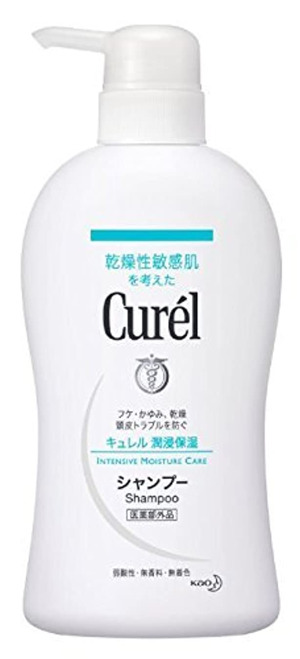 たっぷりサイレント満員花王 Curel(キュレル) シャンプーポンプ420ml×2 1576 P12Sep