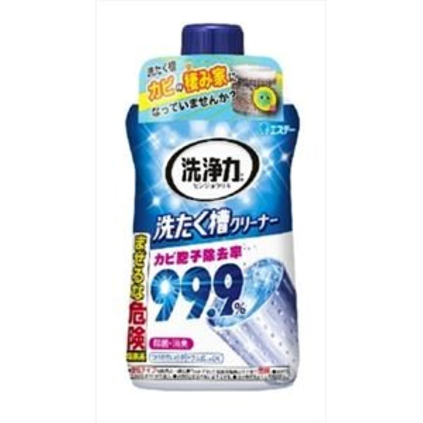 学校教育広大な公(まとめ)エステー 洗浄力 洗たく槽クリーナー 【×5点セット】