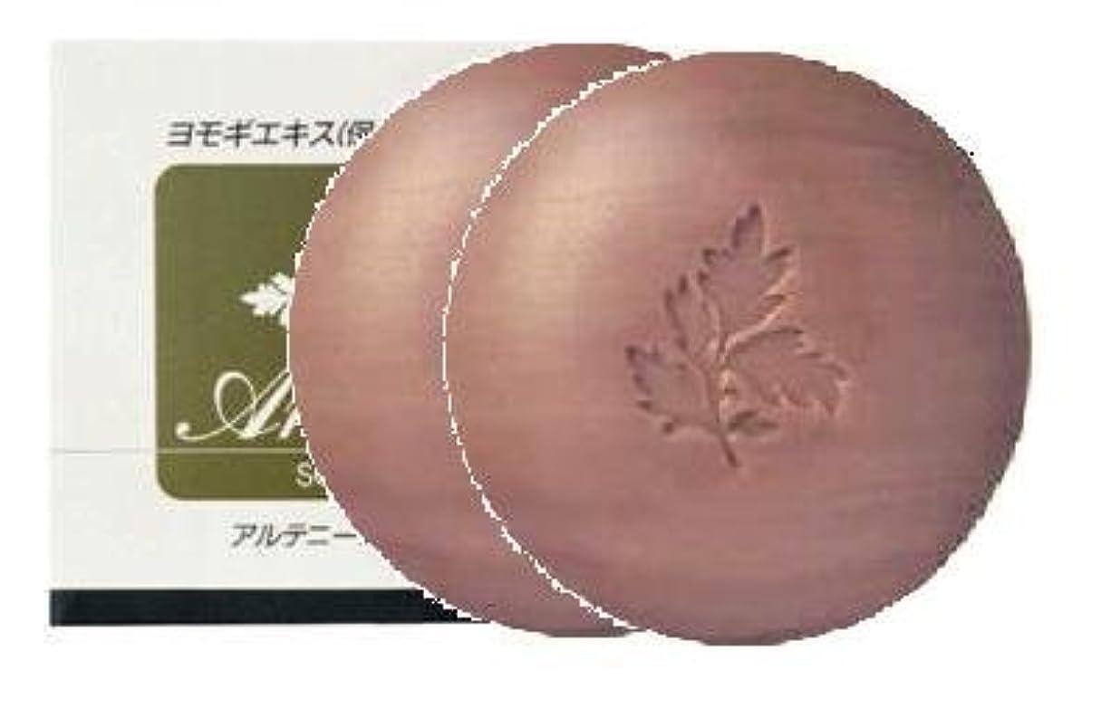 健康的効率愛するアルテニーニ石鹸 2個セット
