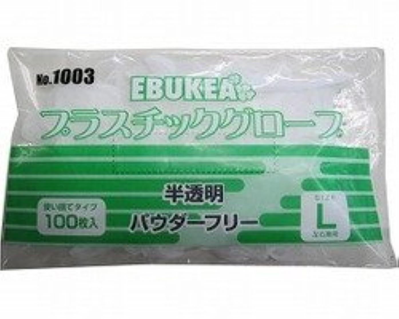 エブケアプラスチックグローブ(パウダーフリー Lサイズ 2ケースセット)