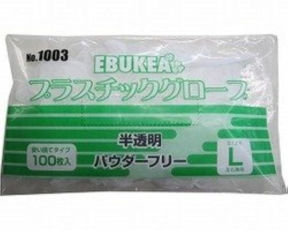 老人電化する確立エブケアプラスチックグローブ(パウダーフリー Lサイズ 2ケースセット)
