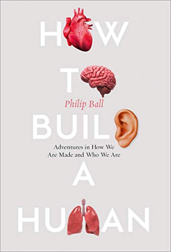 How to Build a Human: Adventures in Who We Are and How We Are Made (English Edition)
