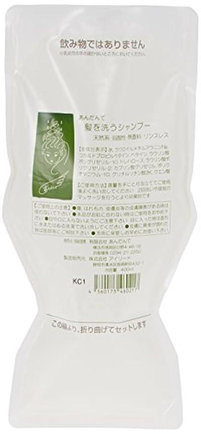 有毒な効能祝福あんだんて 髪を洗うシャンプー 400ml パウチ