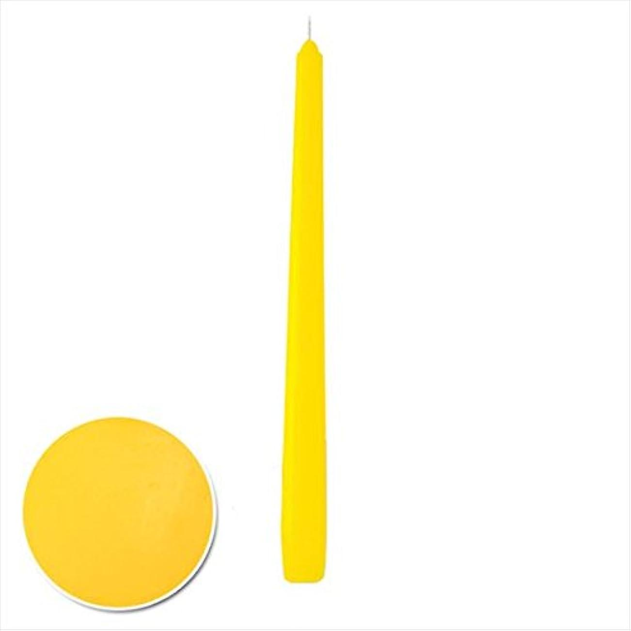 タール要旨光のカメヤマキャンドル(kameyama candle) 12インチテーパー 「 サン 」 12本入り