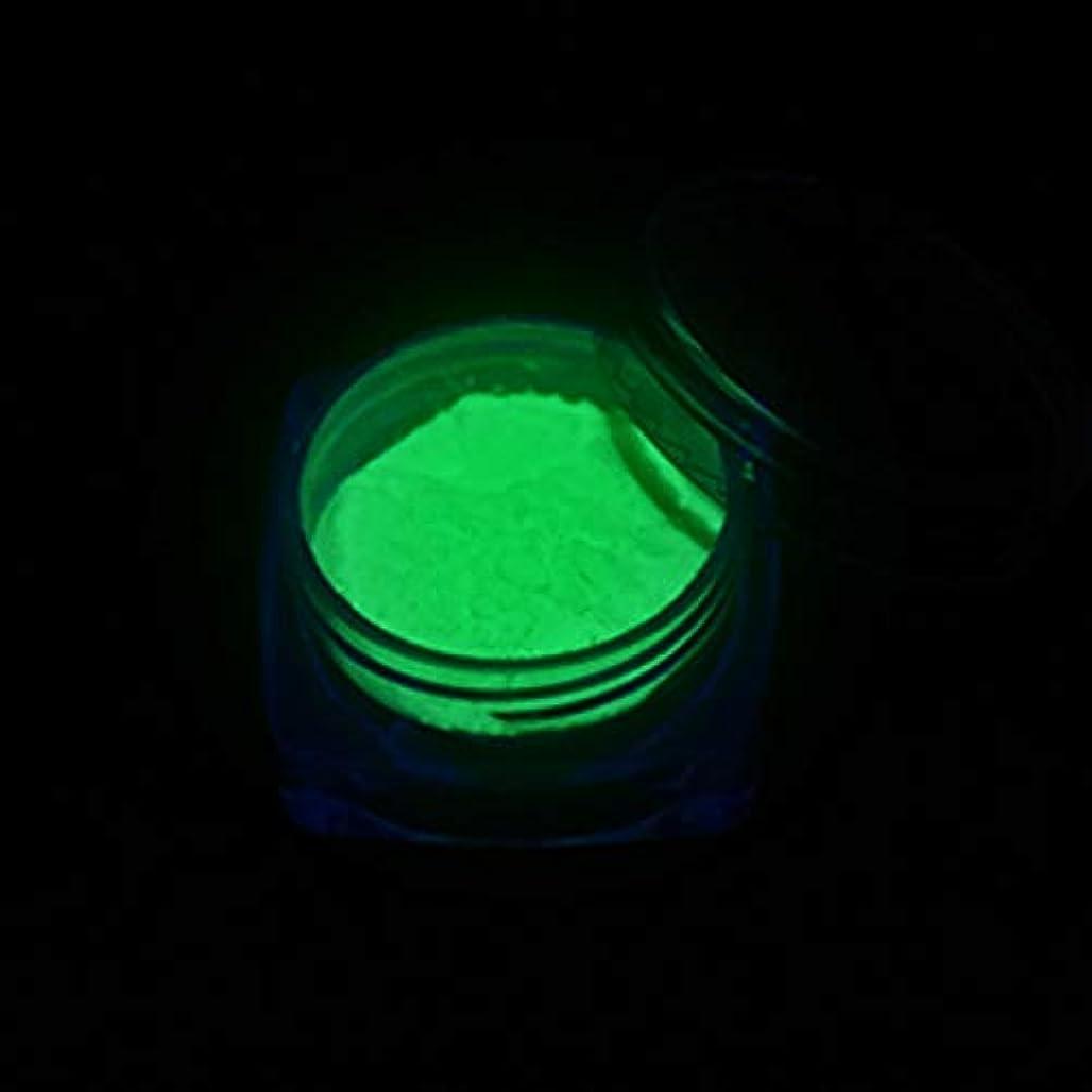 合併応用アンカーMEI1JIA CELINEZL 3 PCSネオン蛍光体パウダーネイルグリッターパウダー(YGF05ダークグリーン) (色 : YGF09 Light Green)