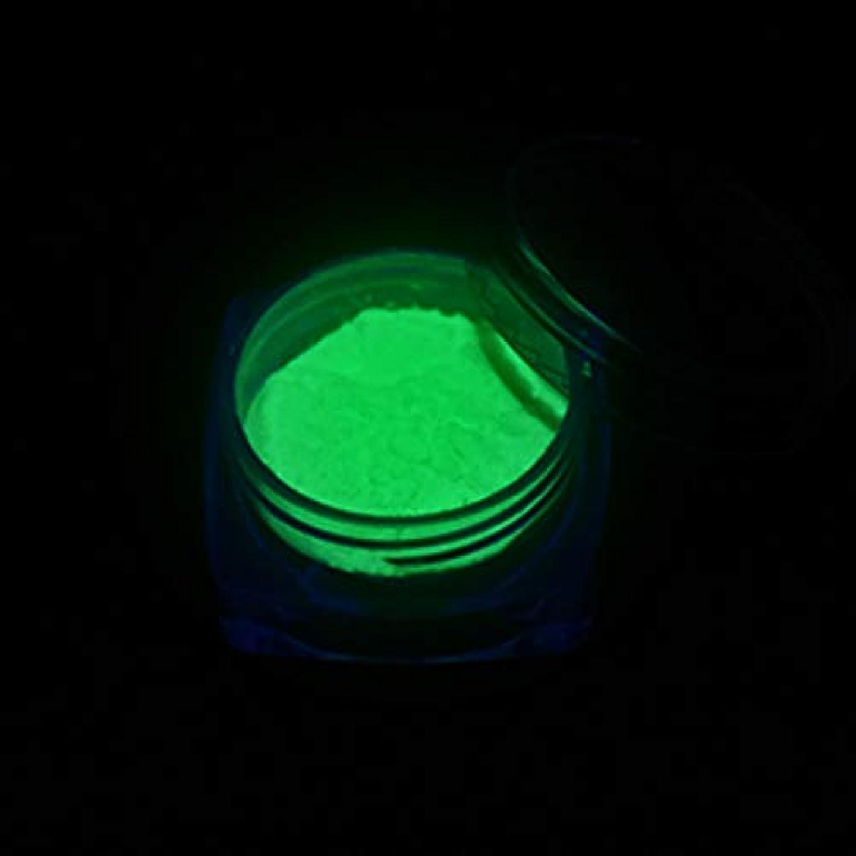 あさりグリット国歌MEI1JIA CELINEZL 3 PCSネオン蛍光体パウダーネイルグリッターパウダー(YGF05ダークグリーン) (色 : YGF09 Light Green)