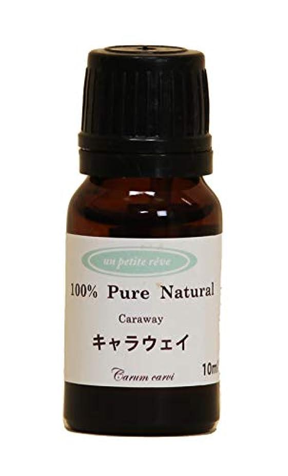 延ばす記憶に残る範囲キャラウェイ  10ml 100%天然アロマエッセンシャルオイル(精油)