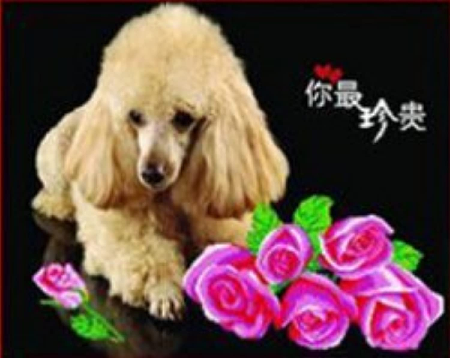 Qihu's 5d Crystal Diamond Painting DIY Counted Paint By Number Kits, Cute Lovely Pet Poodle Dog Pink Rose Flower Picture by Qihu [並行輸入品]
