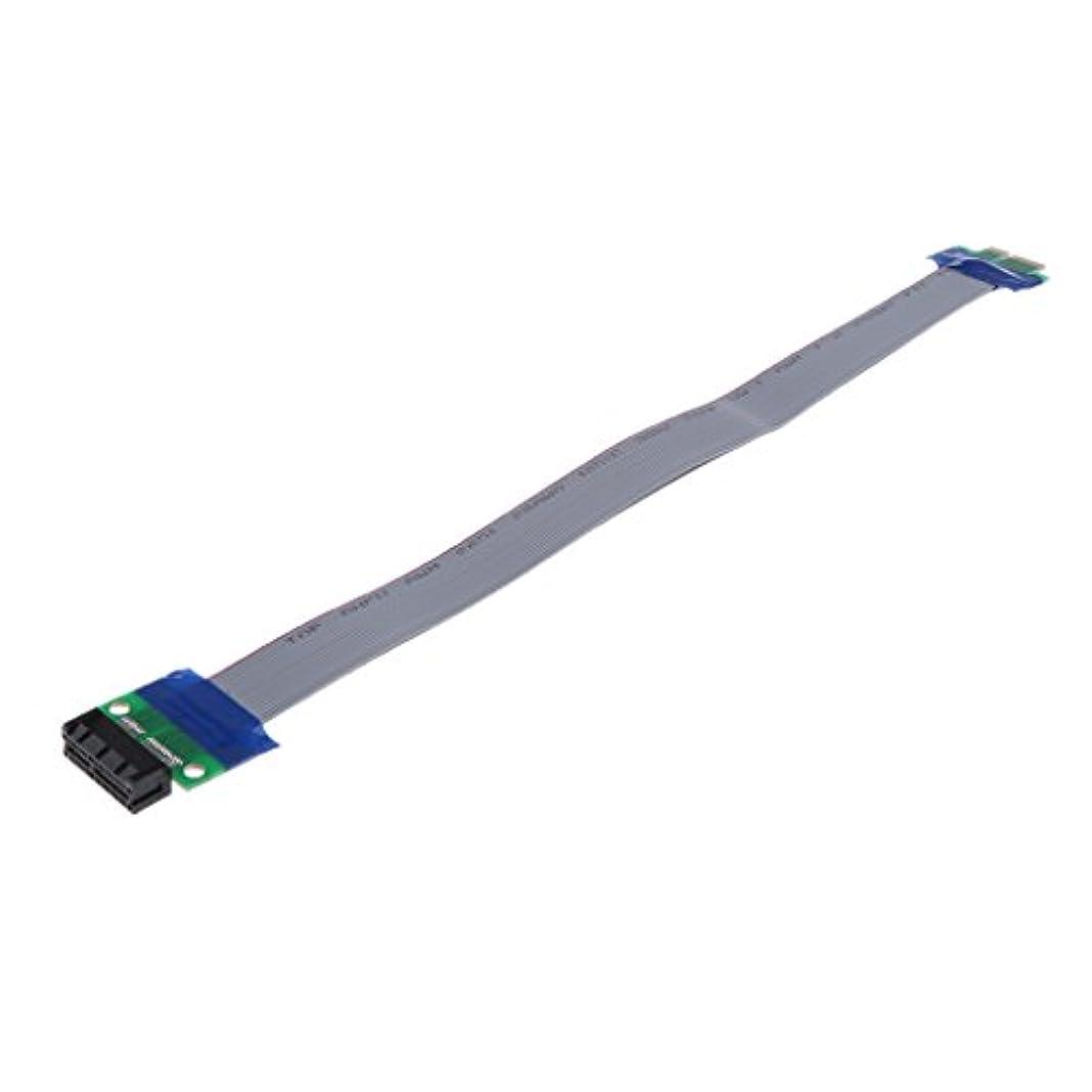 生商品忌避剤Fenteer PCIe 1X延長ケーブル 拡張 リボン フレックス 全2サイズ - 30CM