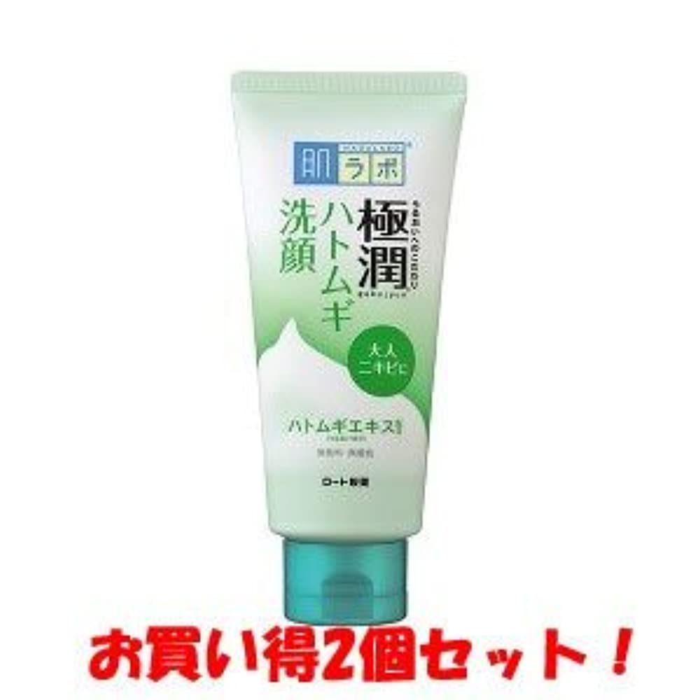 授業料マスク印をつける(ロート製薬)肌研 極潤 ハトムギ洗顔フォーム 110g(お買い得2個セット)