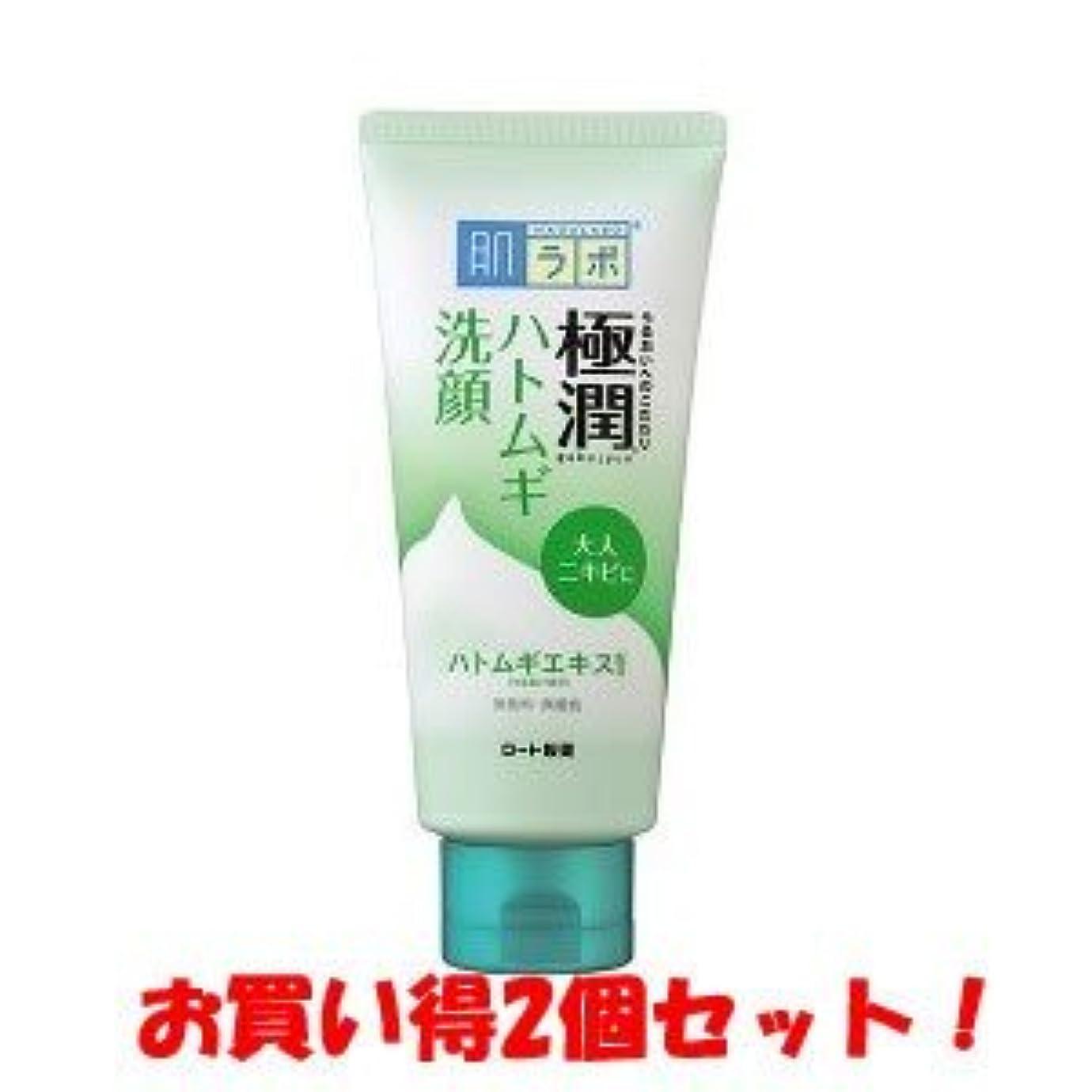 一貫性のない若者退屈(ロート製薬)肌研 極潤 ハトムギ洗顔フォーム 110g(お買い得2個セット)