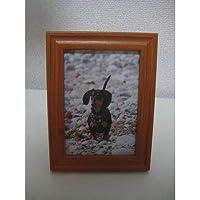 イヌ 動物 アニマル 写真立て グッズ 雑貨