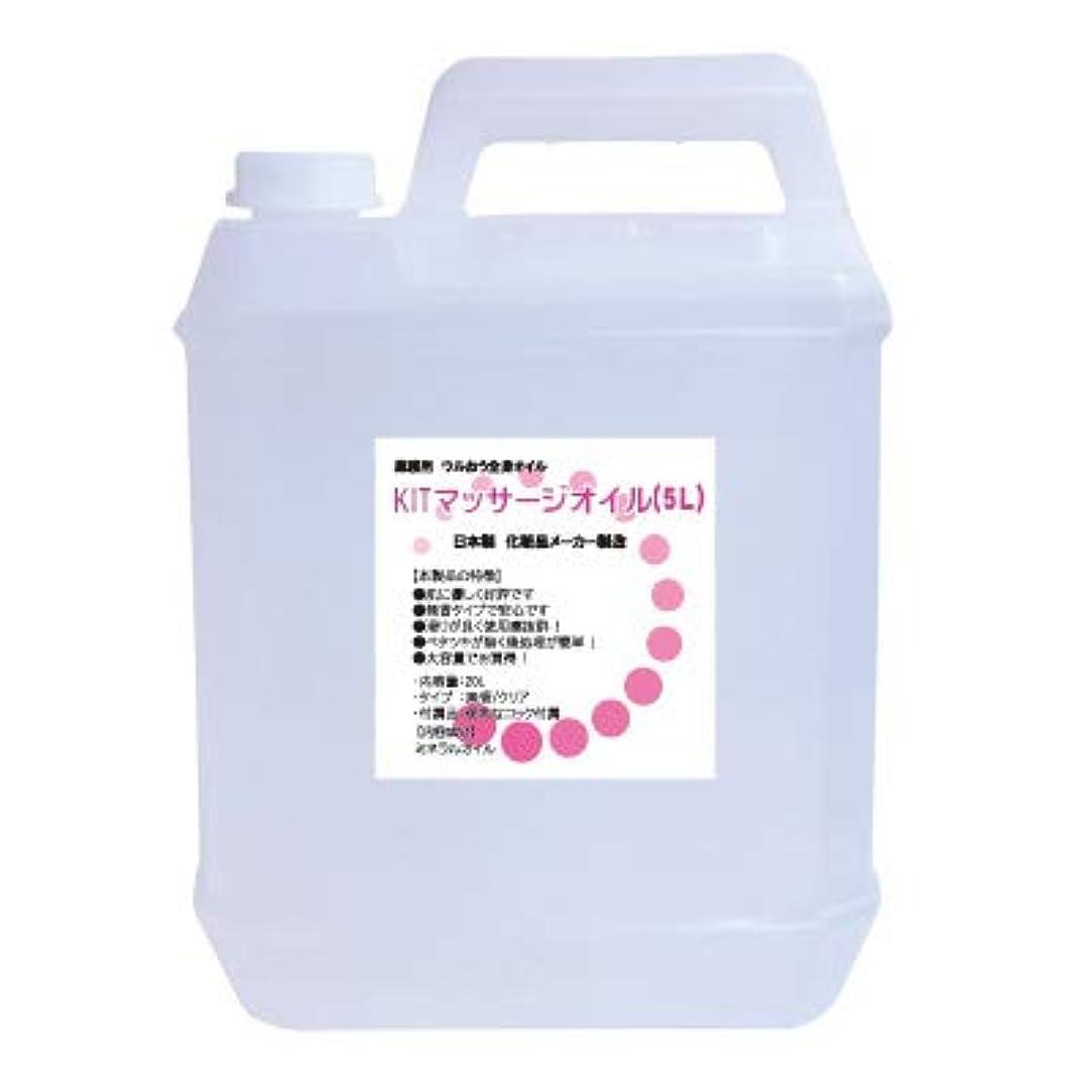規制する合法皮KITマッサージオイル(5L) 無香