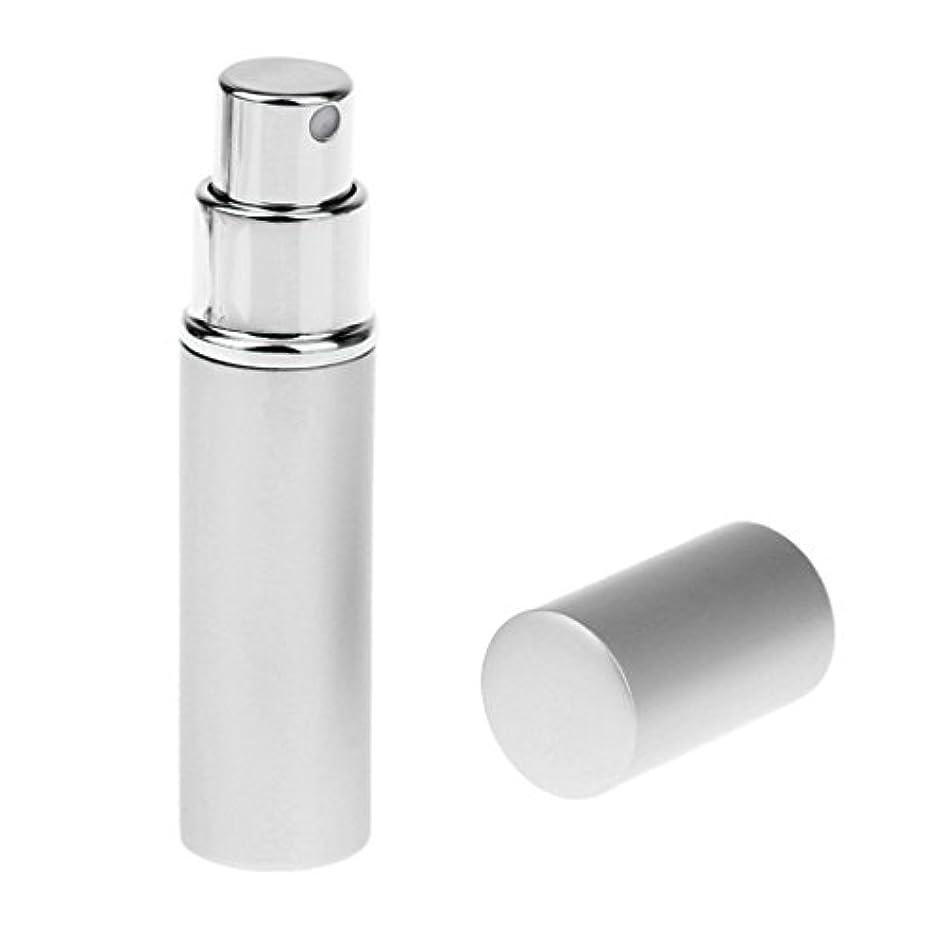 ドラゴンただ永遠に男女兼用 詰め替え可能 ポータブル アルミ ガラス製 香水アトマイザー 空ボトル ポンプ 銀色