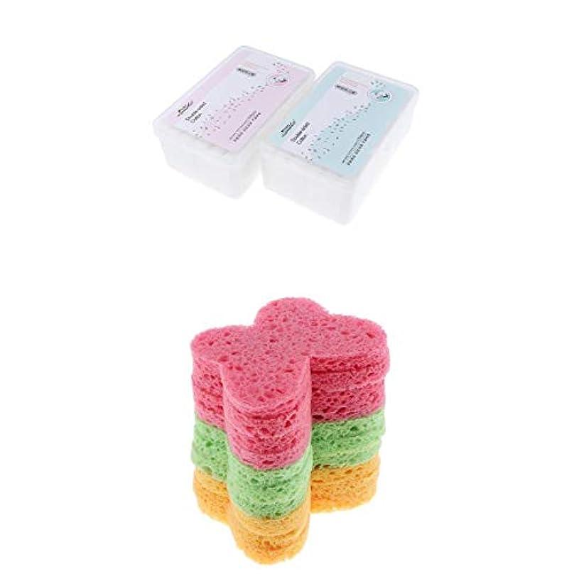 排泄物イサカ毛布DYNWAVE 10x洗浄きれいなスポンジのパフエクスフォリエーターの除去剤が付いている2箱の構造の取り外しのパッド