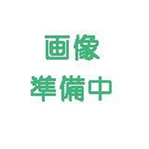 ズッキーニ 種 ダイナー 小袋(約100粒)