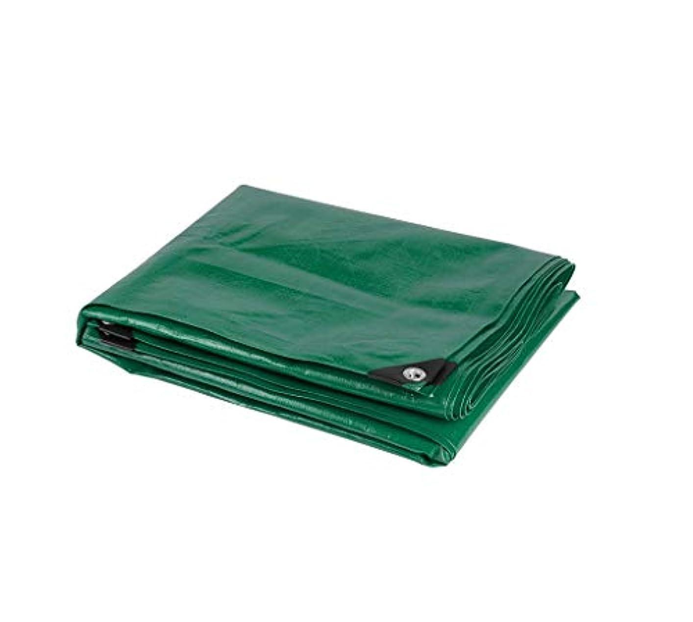 最初はスポンサーアカデミックTarpaulin 防水性、軽量、耐引裂性コンパクト/ターポリンキャンプ(3色展開) Garden tent (Color : Green, Size : 5*6m)
