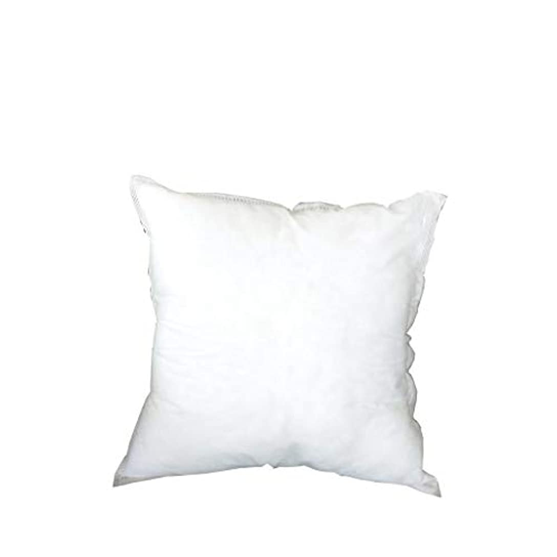 学者体熱心なLIFE 寝具正方形 PP 綿枕インテリア家の装飾白 45 × 45 車のソファチェアクッション coussin decoratif 新 クッション 椅子