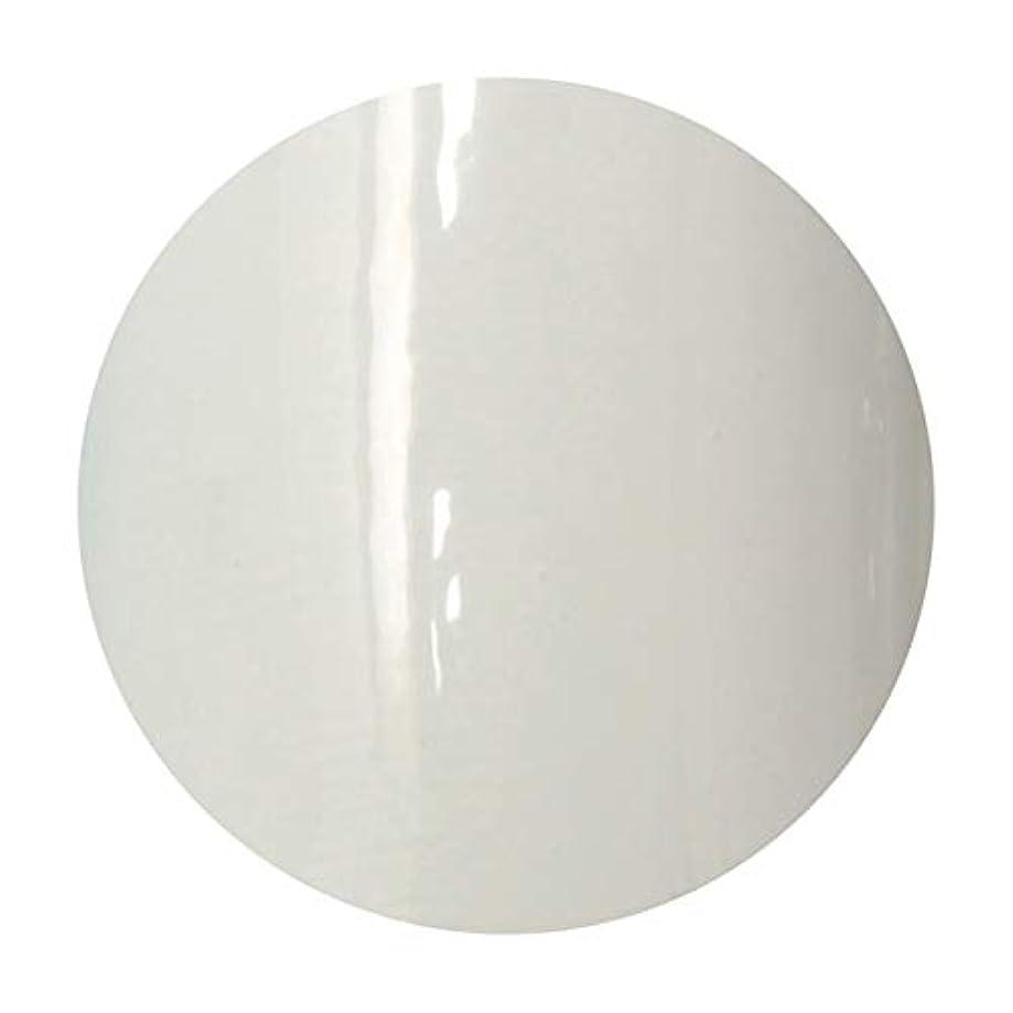 緊張する肯定的投げるT-GEL COLLECTION ティージェル カラージェル D218 ホワイトライナーEX 4ml