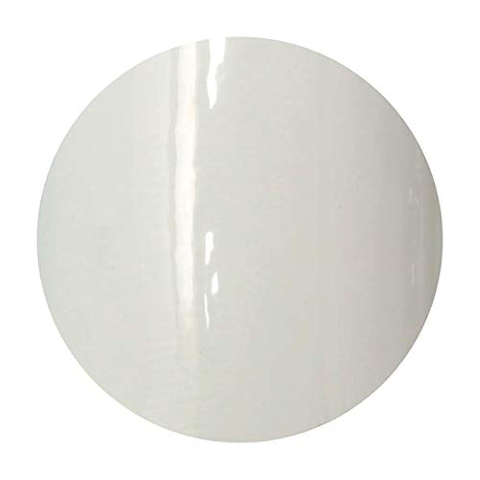 オーディションオペレーター酸っぱいT-GEL COLLECTION ティージェル カラージェル D218 ホワイトライナーEX 4ml