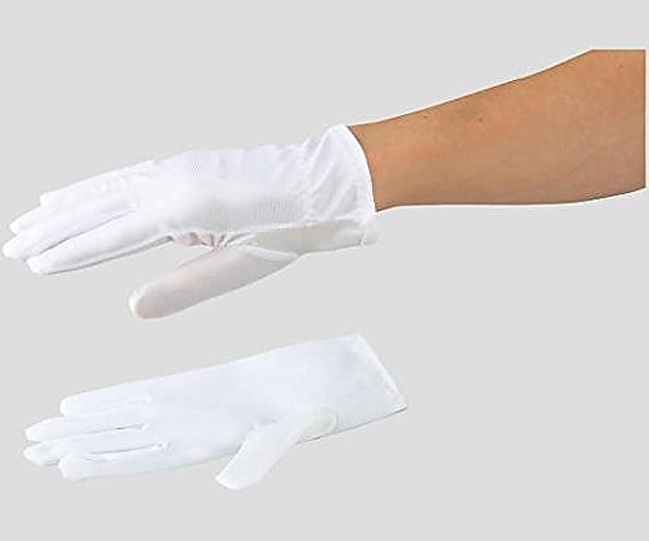 アズピュア 防塵手袋 ポリエステル 12双