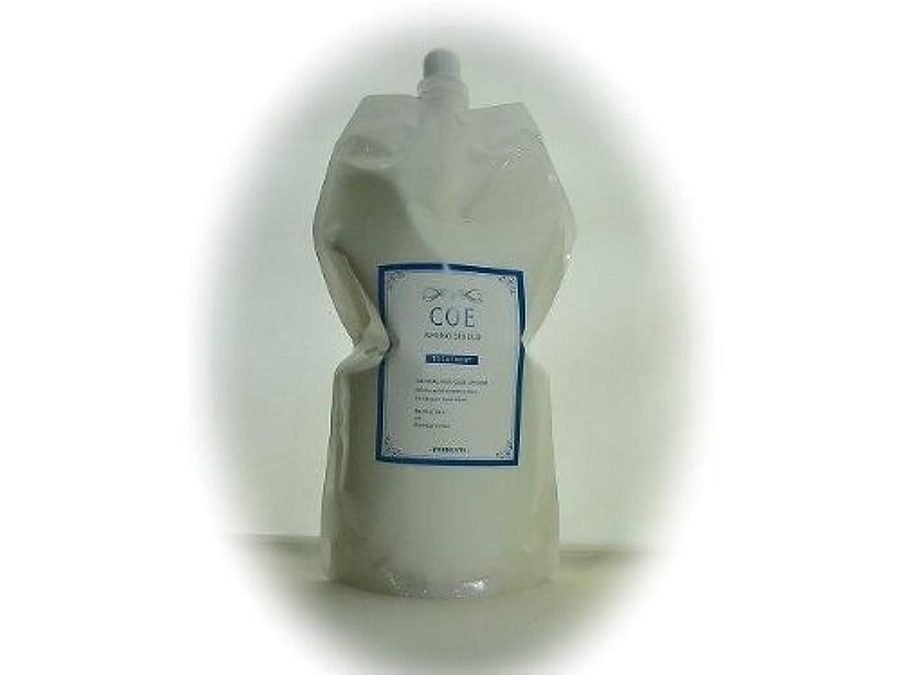 植木乳製品感動する新 アミノシールド トリートメント エッセンスCOE 1L詰替