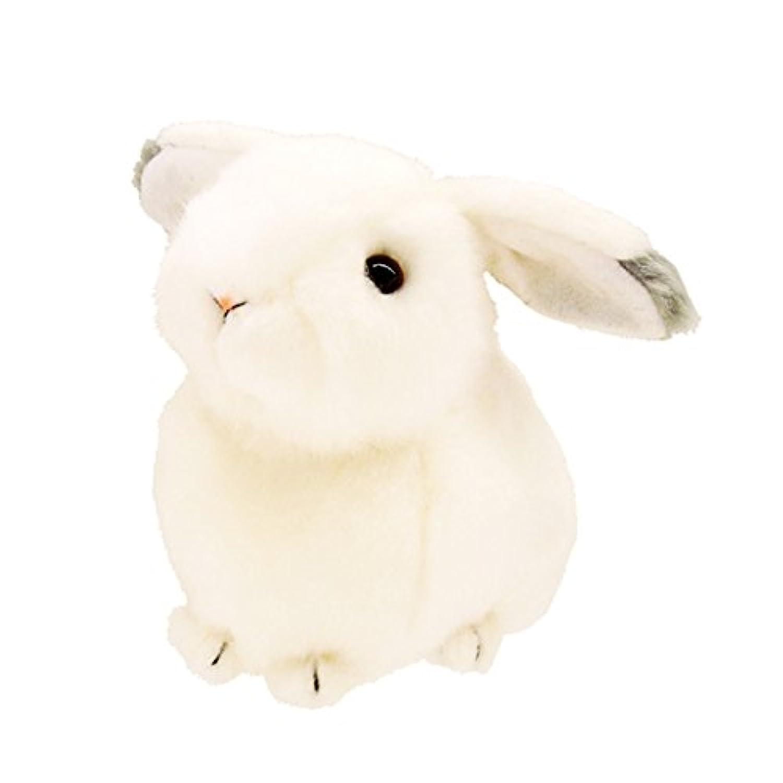 オルゴールぬいぐるみ ユキウサギ 「星に願いを」 180045