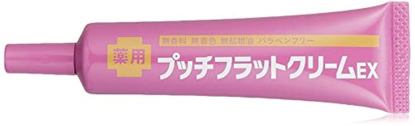 勝者お客様伝記GR(ジーアール) 薬用プッチフラットクリームEX 15g