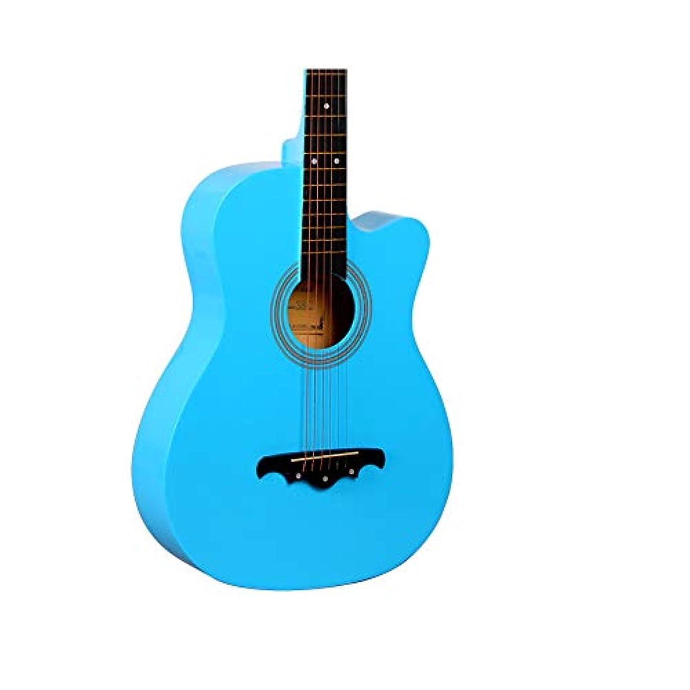 庭園引退する丁寧ギター 初心者 入門 アコースティック クラシックギター どこへでも気軽に持ち運べ